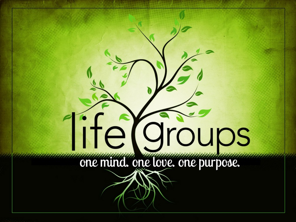 lifegroup 2016